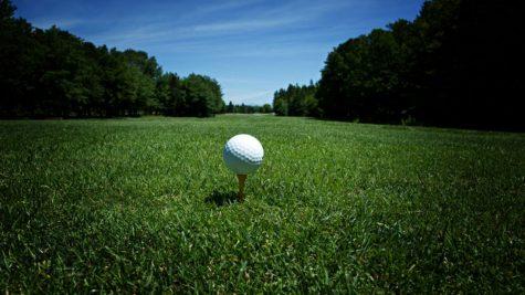 Junior golfer on par with academics, athletics