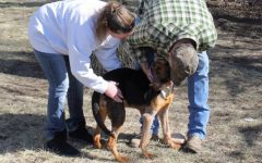 Warren County sheriff adopts dog he rescued in abuse case
