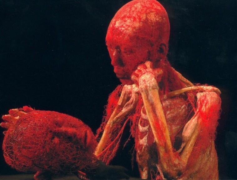 Body+Worlds+features+3-D+human+art