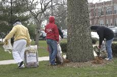 Campus Day tradition brings service opportunities, fun to campus