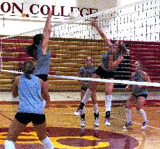 Storm volleyball knocks out Cornell, falls to Central in IIAC tournament