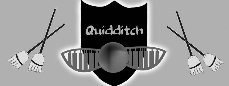 Simpson Muggles Excited to See Quidditch