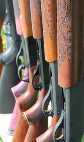 Students disagree on gun control measures