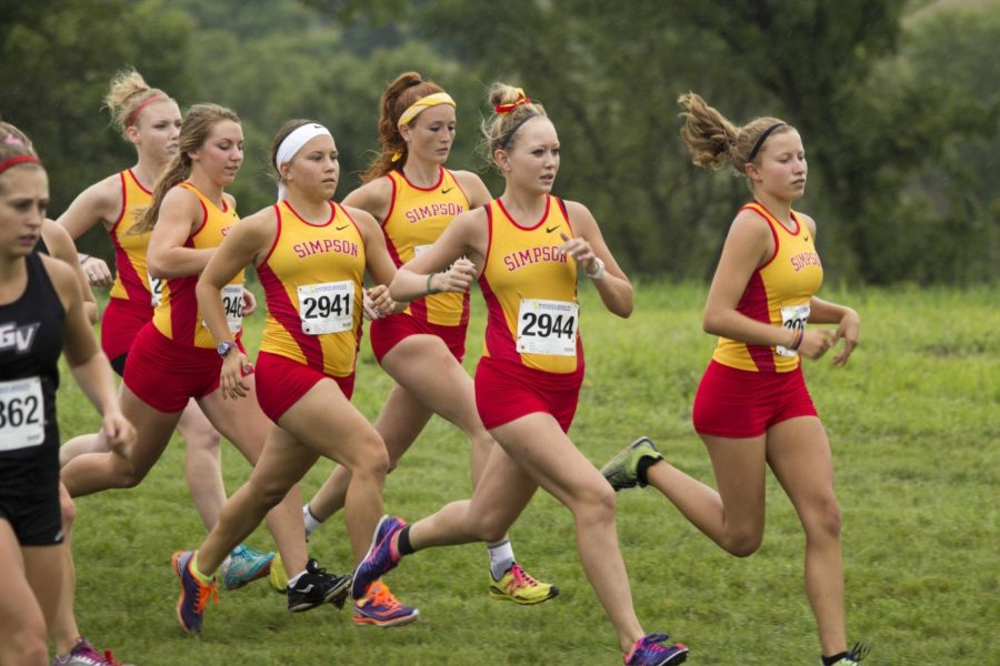 Men's and women's XC meet expectations - Timms and Willadsen lead