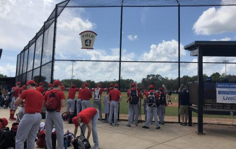 Simpson baseball senior careers end in Florida